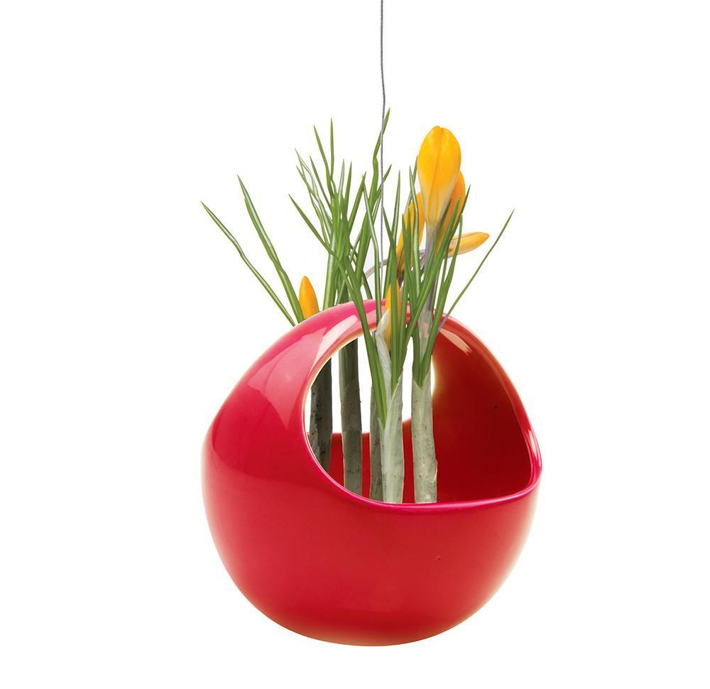 Hanging Aerium  Nest - Red
