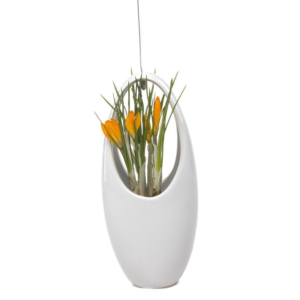 Hanging Aerium Egg - White