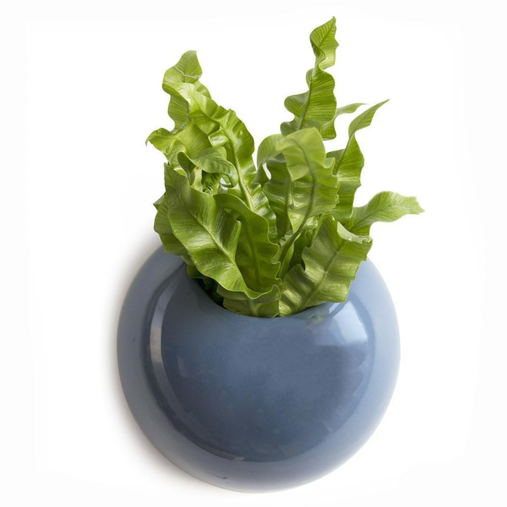 Yoke Wall Planter - Seaport Blue