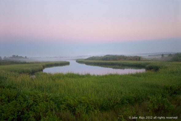 Marsh, Dawn, Quogue, New York, Long Island, Hamptons