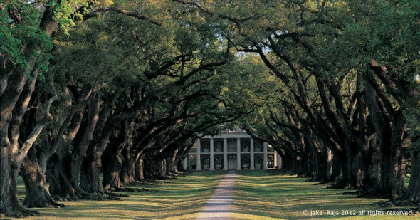 Louisiana. Vacherie, Oak Alley Plantation, built 1837-1839