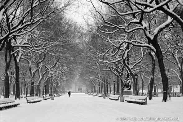 Central Park, New York City, New York, Manhattan, Poets Alley, The Mall, Snow