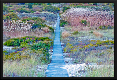 Boardwalk through Dunes 1, Amagansett