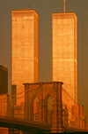 Twin Towers & Brooklyn Bridge Golden