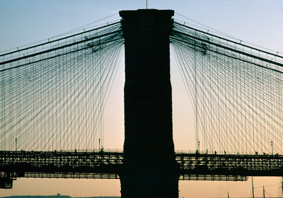 Brooklyn Bridge Graphic