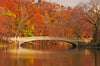 Bow Bridge, Fall