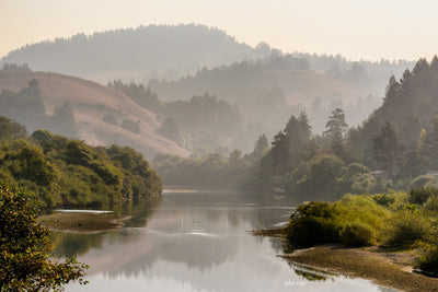 Russian River, Morning