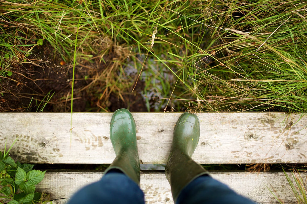 Legs and Green Rubber Boots on a Wooden Board.