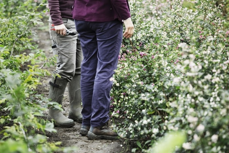 Two people standing in the garden in wellington work boots.