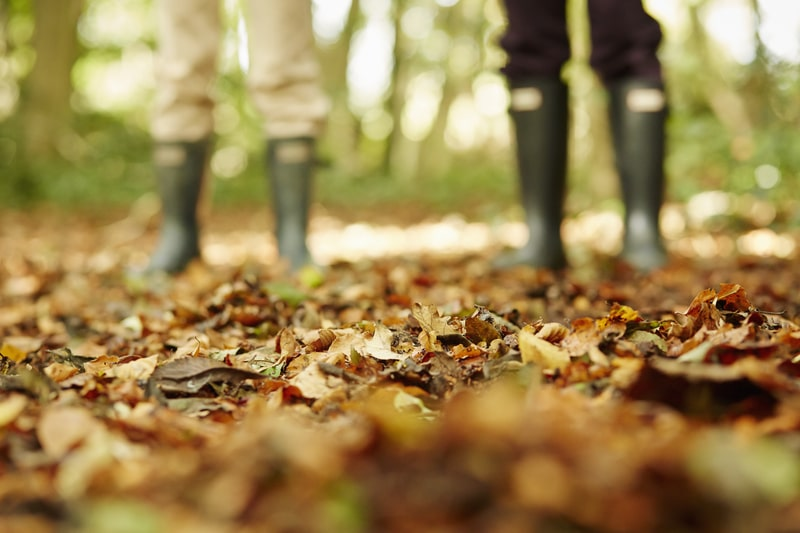 Two mans in wellington boots walking through the fallen leaves.