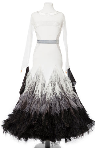 Beautiful junior ballroom dress, in shaded skirt, pearl chiffon and ostrich feather shading, top is lycra with stretch net and velvet inserts.  Wide pearl chiffon wings, detachable.