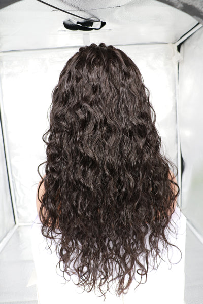 full lace human hair wig virgin 100% 7a grade 13 x 4 13x6 inches 8 10 12 14 16 18 20 22 24 26 inch in brazilian malaysian peruvian wigs cheap fast shipping african american company black owned business
