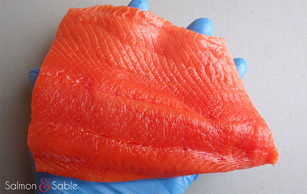 Sockeye Salmon (Christmas Catch)