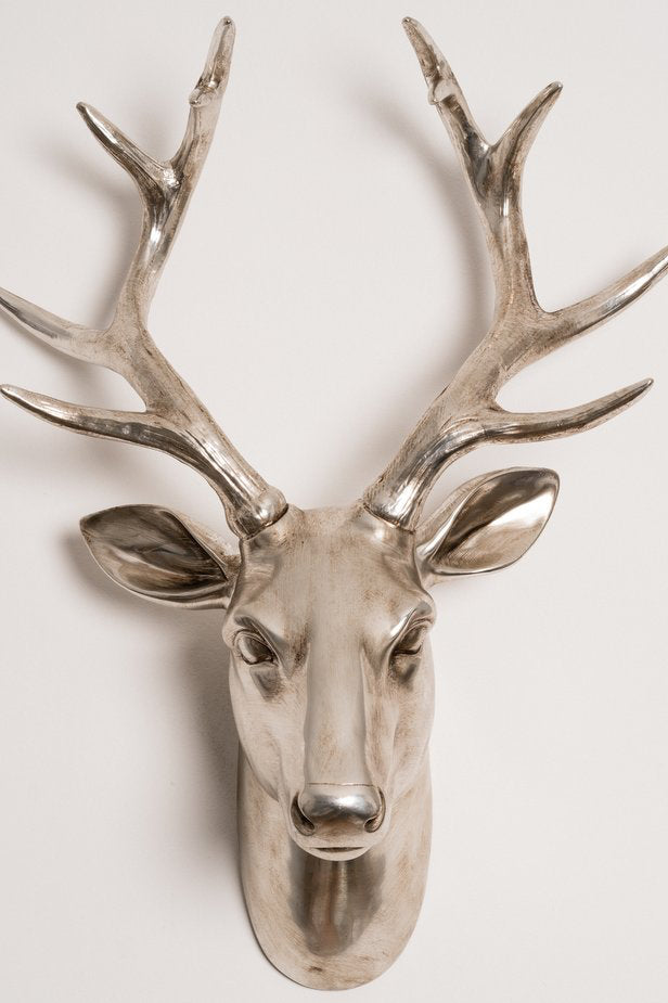 Champagne Deer Head