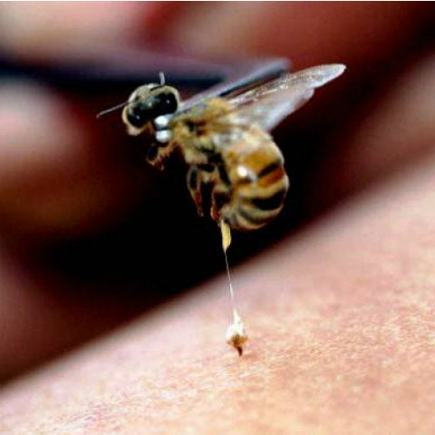 Ascorbic Acid and Alpha Hydroxy Acids cause a mild skin puffing, similar to a bee sting