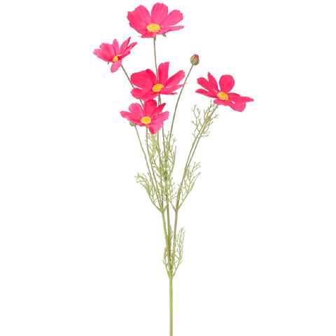 Pink Cosmos Spray