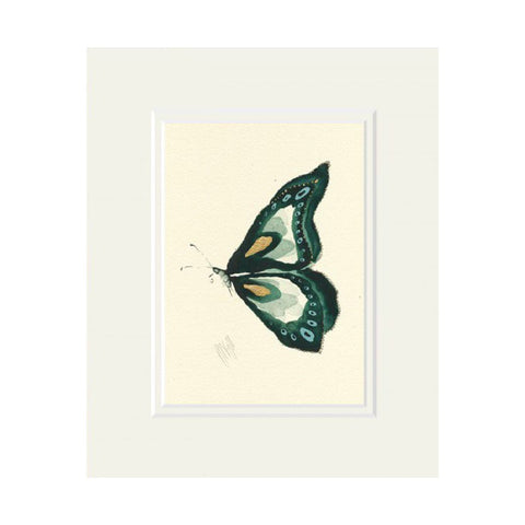 Green Butterfly Mounted Print by Anna Wright