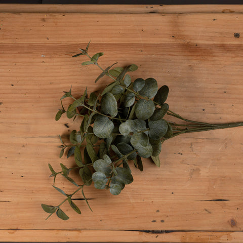 Short Eucalyptus Spray