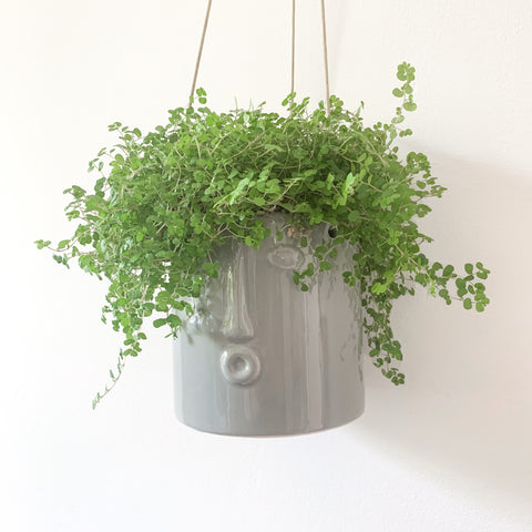 Grey Hanging Pot with Face