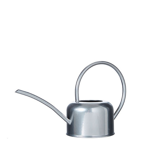 Silver Indoor Watering Can 1L