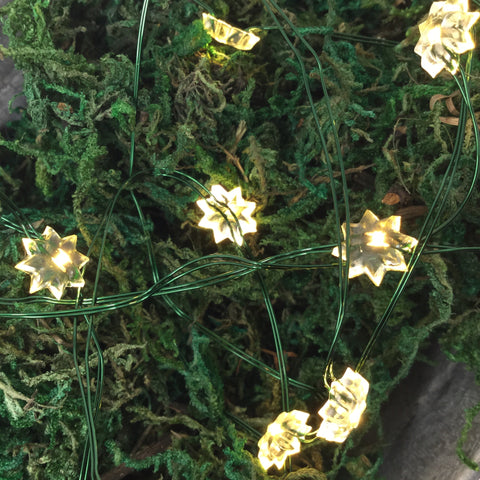 Outdoor Micro Flower LED String 40 Lights