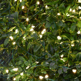 Outdoor Micro LED String 160 Lights 16M