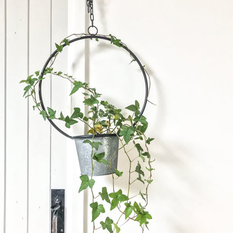Hanging Metal Hoop Planter