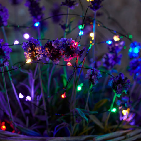 Indoor/Outdoor Multi Lights 80LED