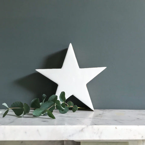 White Enamel and Wood Star