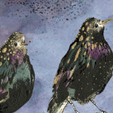 Starlings Mounted Print by Anna Wright