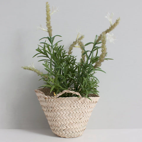 Palm Leaf Basket XS