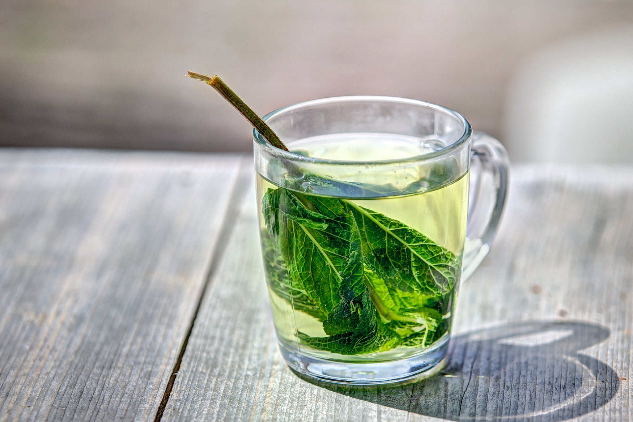 New Study: Green Tea Helps with Memory Loss