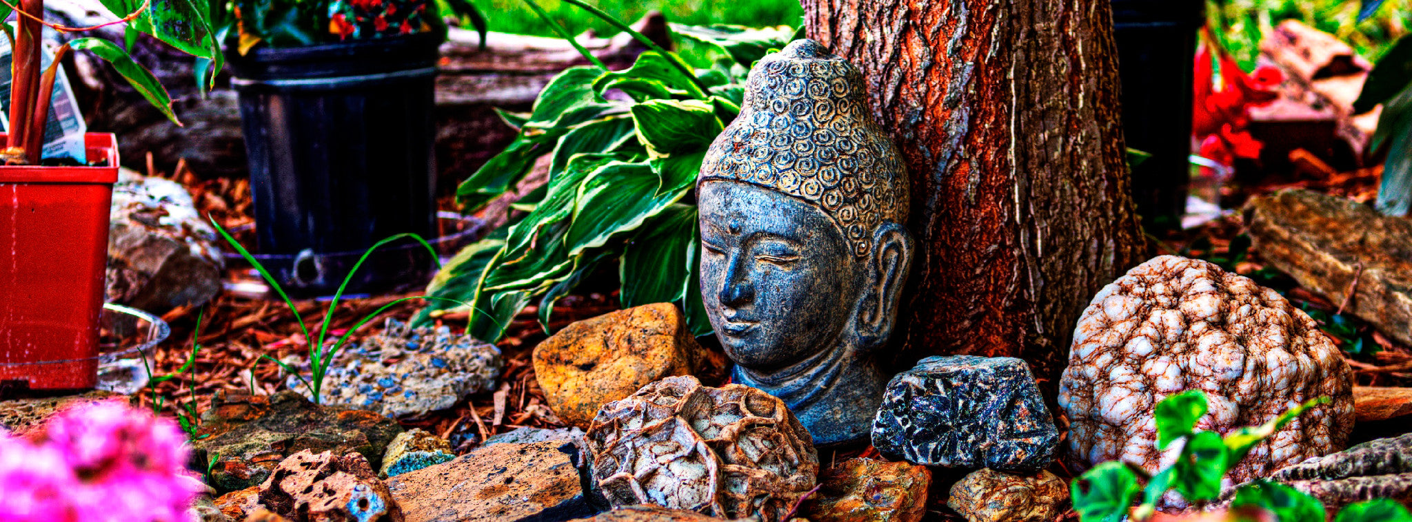 5 Ways To Celebrate Bodhi Day