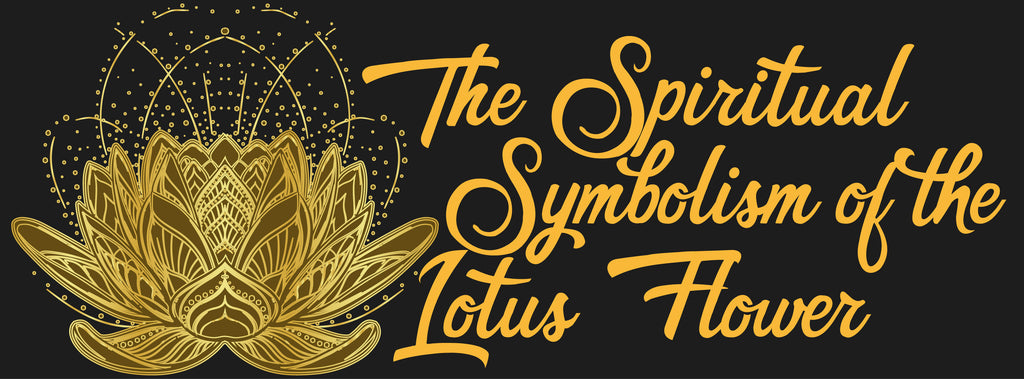The spiritual symbolism of the lotus flower infinite beings its for this reason that the lotus flower also represents spiritual development mightylinksfo
