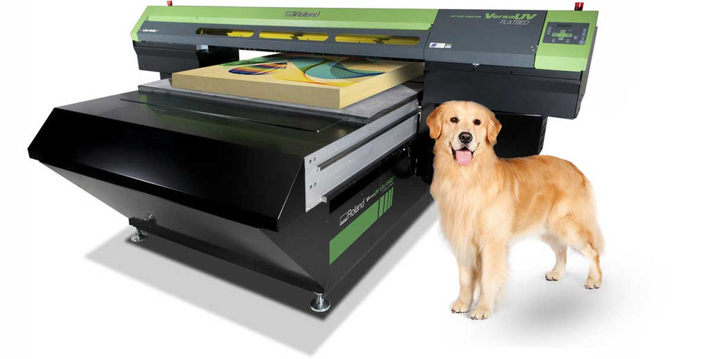 UV Printer and Golden Retriever