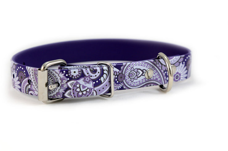 Purple Paisley Waterproof Sport Dog Collar - 1 inch Buckle View