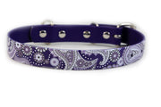 Purple Paisley Waterproof Sport Dog Collar - 1 inch