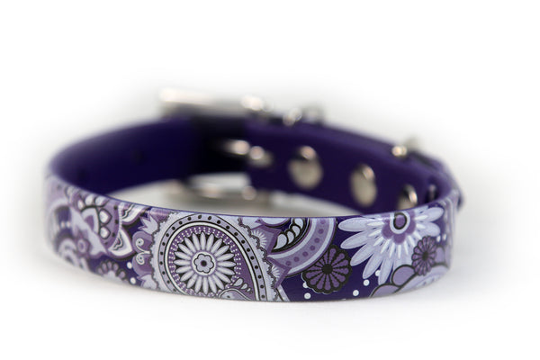 Purple Paisley Waterproof Sport Dog Collar - 3/4 inch