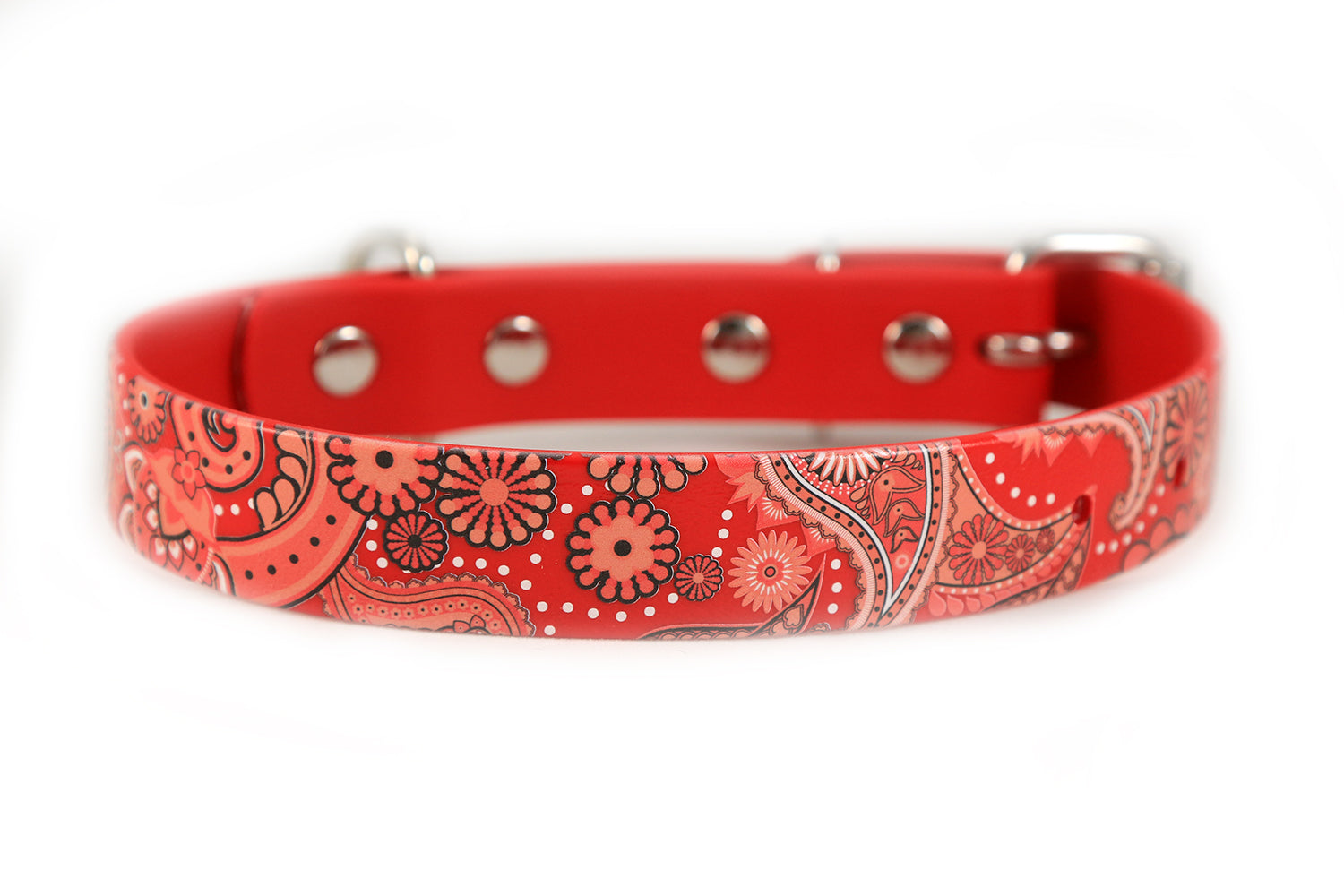 Red Paisley Waterproof Sport Dog Collar - 1 inch
