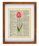 Pink Tulips Vintage- Art Vintage Dictionary Wall Art Print - Flower Wall Art