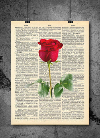 Red Rose Vintage - Art Vintage Dictionary Wall Art Print - Flower Rose Wall Art