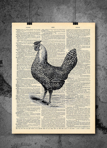 Chicken Farm Black Sketch Wall Art Animal Collection - Farm Vintage Dictionary Print