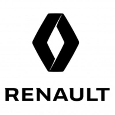 RENAULT heavy-duty cargo netting