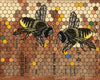 Honeybees and Honeycomb Art Print
