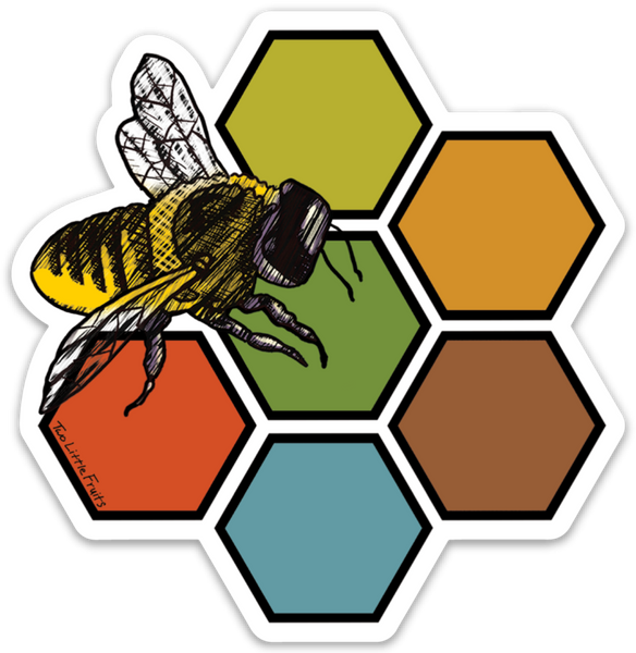Large Honey Bee and Honeycomb Decal, Sticker - Two Little Fruits