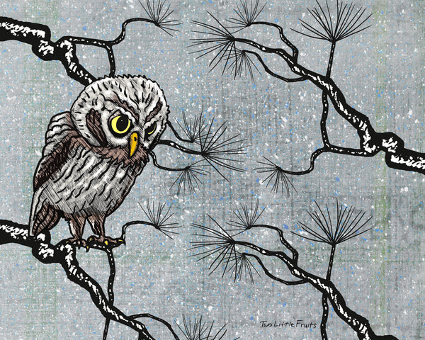 Winter Owl Art Print, Paper Prints - Two Little Fruits