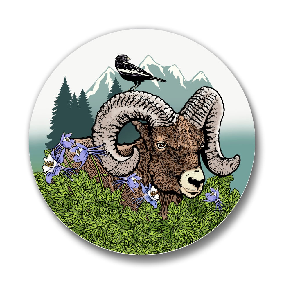 Rocky Mountain Bighorn Sheep Matte Button Pin, Button Pins - Two Little Fruits