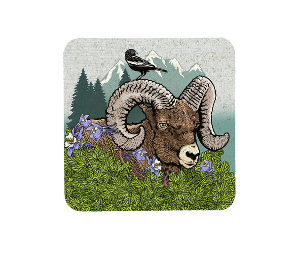 Bighorn Ram and Columbine Cork Coaster, Coasters - Two Little Fruits