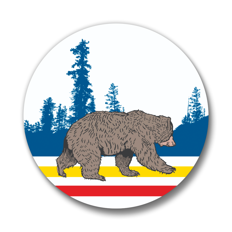 Mountain Sport Bear Button Pin, Button Pins - Two Little Fruits