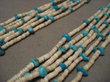 Very Old Santo Domingo Turquoise Shell Necklace-Nativo Arts